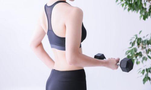 痩せる筋トレ・トレーニングとは【シェイプスガール京都店 女性専用ダイエットボディメイクジム】